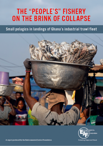 """The """"people's"""" fishery on the brink of collapse: Small pelagics in landings of Ghana's industrial trawl fleet"""
