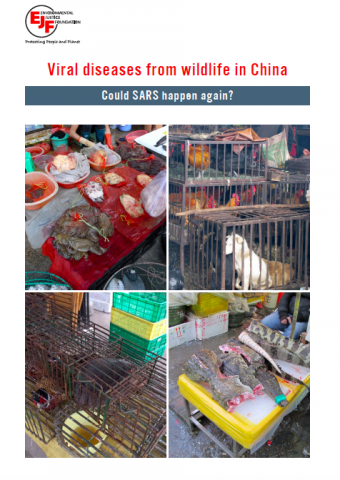 Viral diseases from wildlife in China: Could SARS happen again?