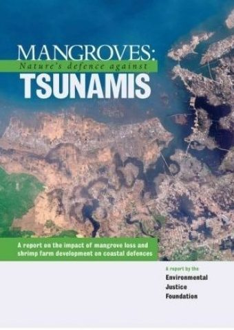 Mangroves: Nature's Defence Against Tsunamis